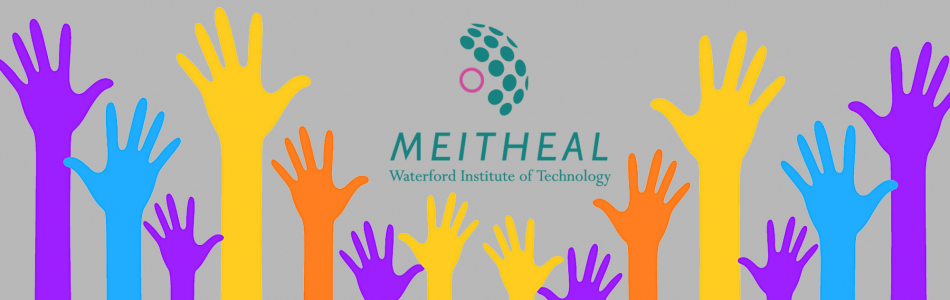 Welcome to Meitheal