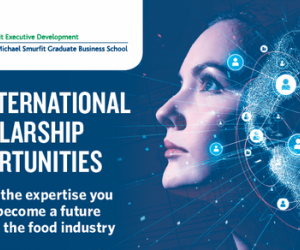 UCD Michael Smurfit have 70 International Scholarships - Apply today!