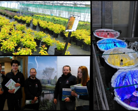 BSc in Horticulture (Kildalton College)