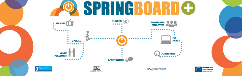 Springboard Funded Courses 2019
