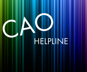 Ask WIT: CAO Offers Helpline