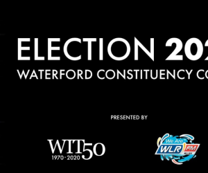 General Election 2020 Waterford count centre livestream