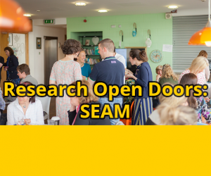 Research Open Doors: South Eastern Applied Materials Research Centre (SEAM)