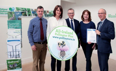 WIT signs up to the All Ireland Pollinator Plan