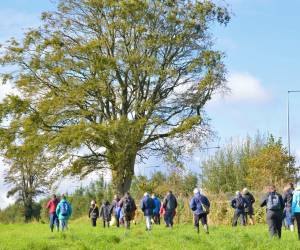 10-week course for people wild about wildlife