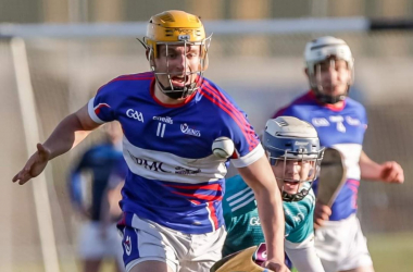 Fifteen WIT students and alumni to represent Waterford in All-Ireland final