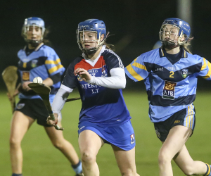 20+ students and alumni played part in All Ireland Senior Camogie Semi-Finals