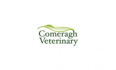 BSc in Agriculture project poster award was sponsored by Comeragh Veterinary Practice.