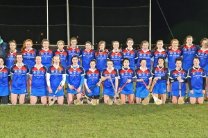 Camogie club has done groundwork for Ashbourne Cup Weekend 2018