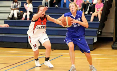 WIT Wildcats in national basketball semi-final