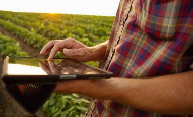 Ireland is fertile soil for the global future of smart agriculture