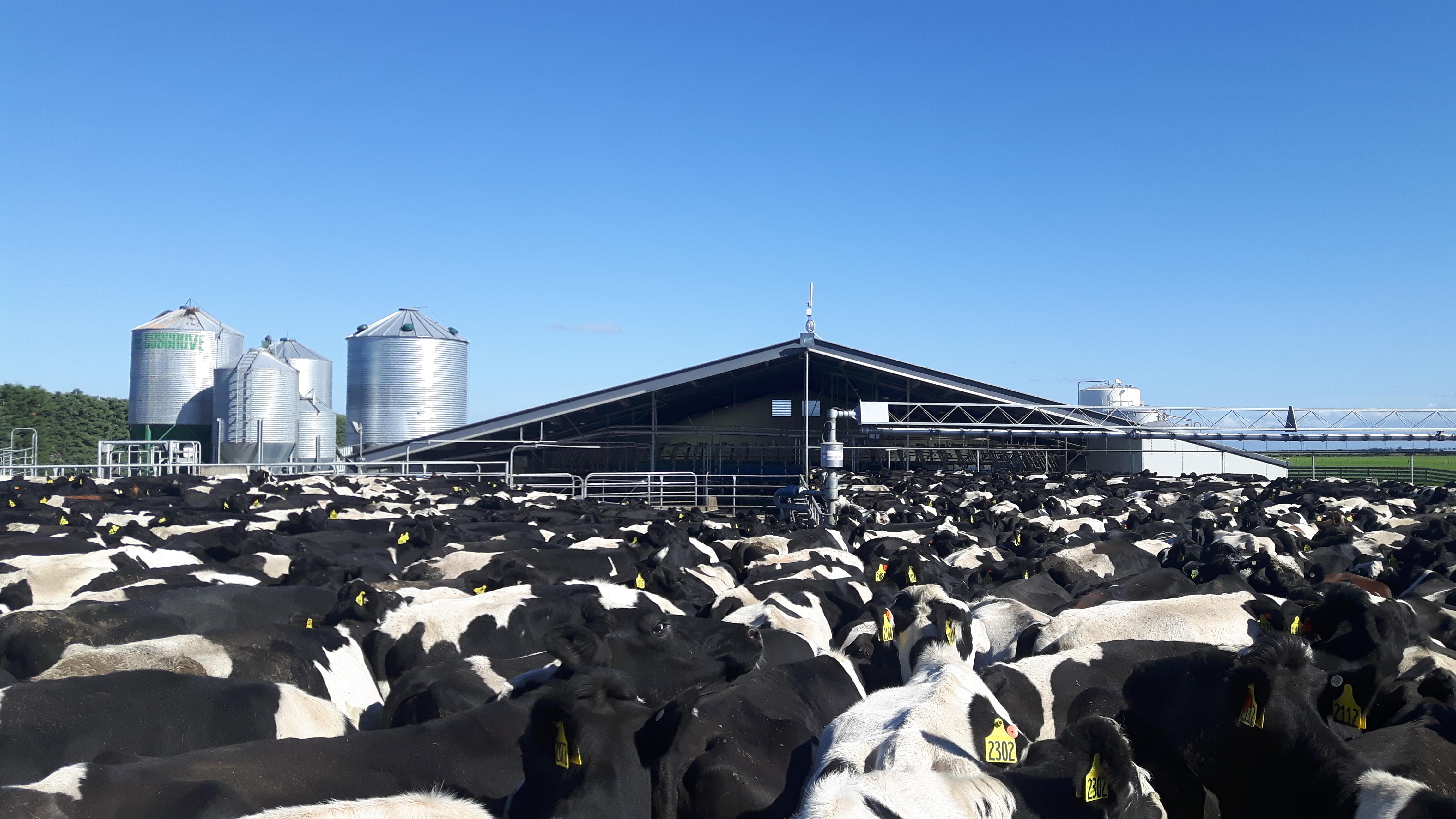 Kolmar Dairies