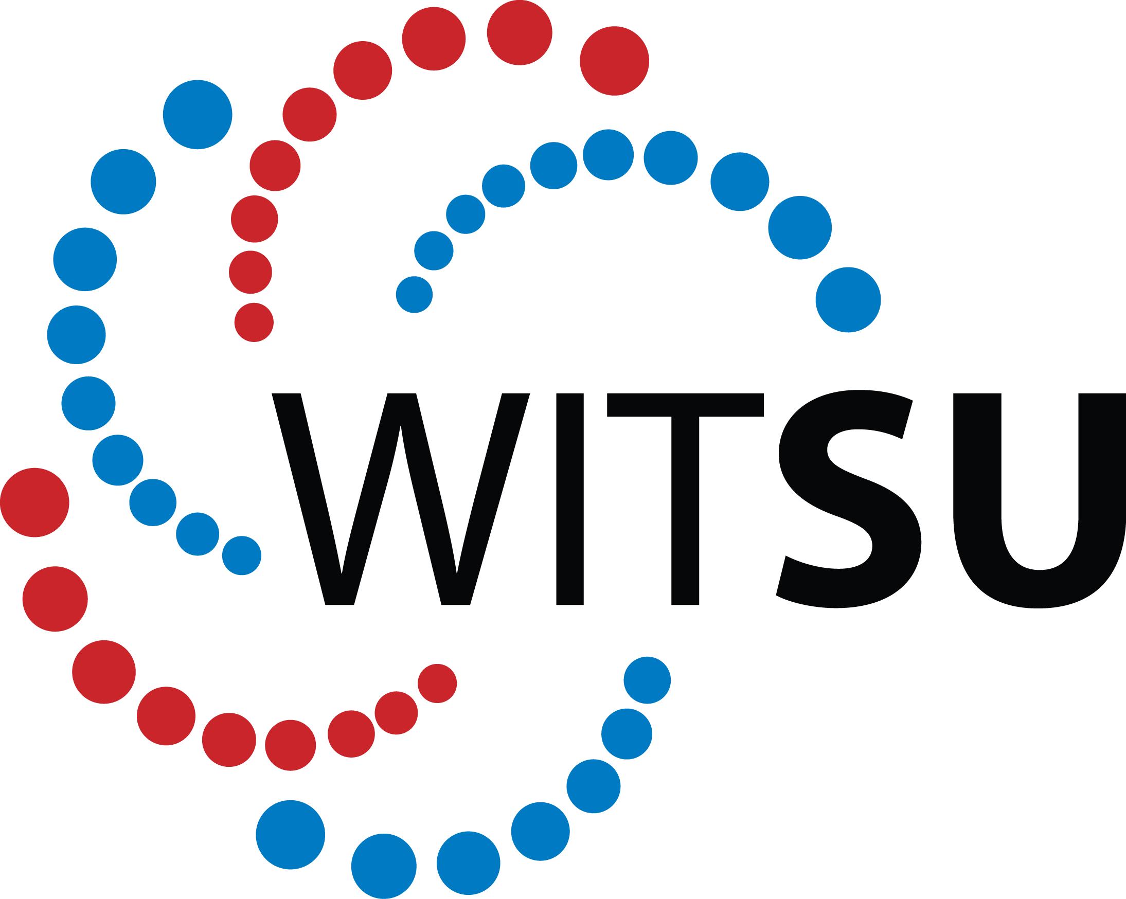 WITSU Logo
