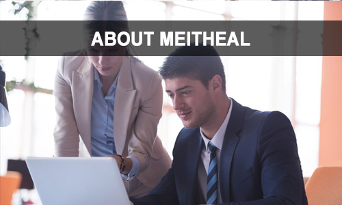 About Meitheal