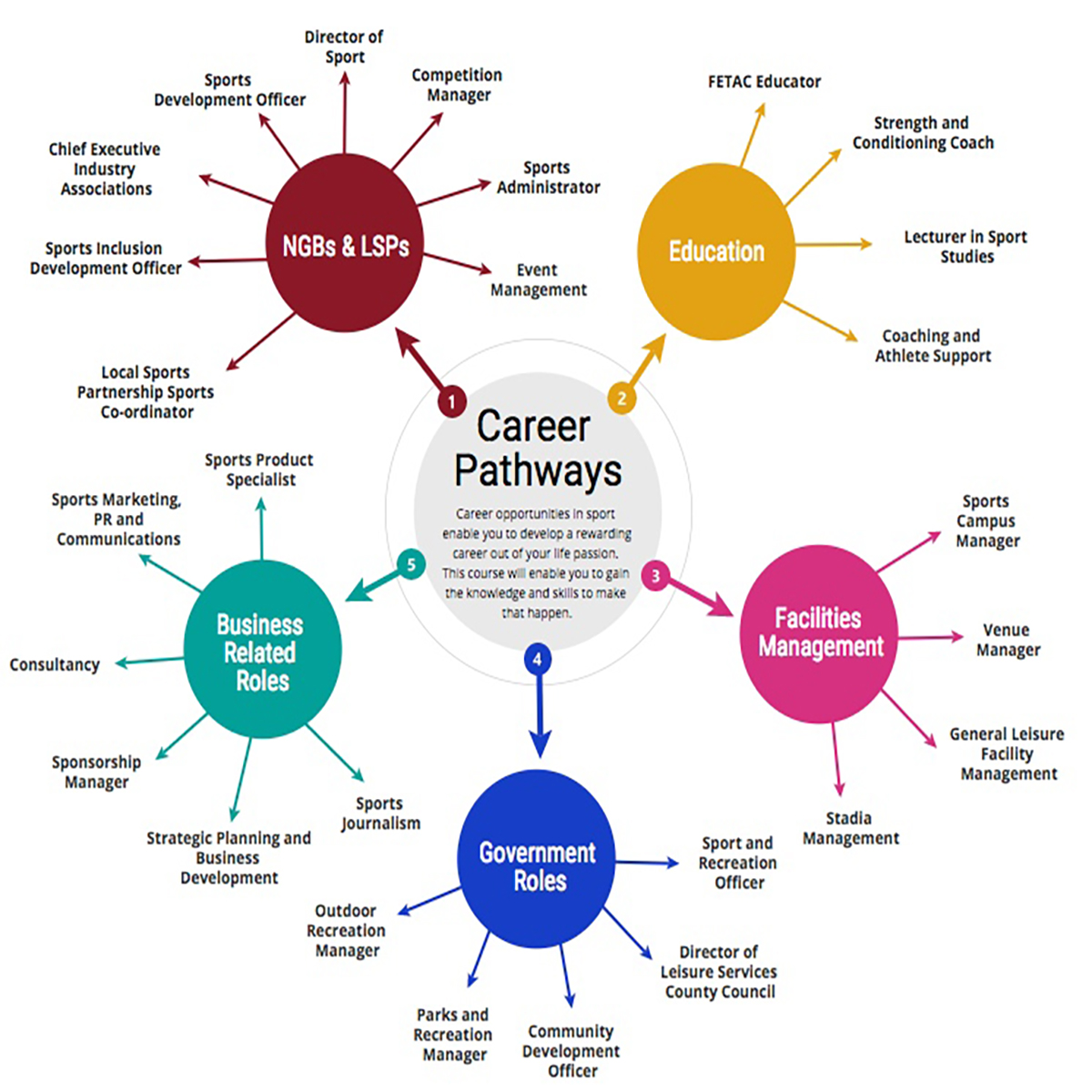 Sport Management Jobs Image