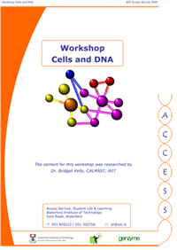 Cells and DNA workshop pic