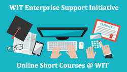 Four free courses announced as part of WIT Enterprise Support Initiative
