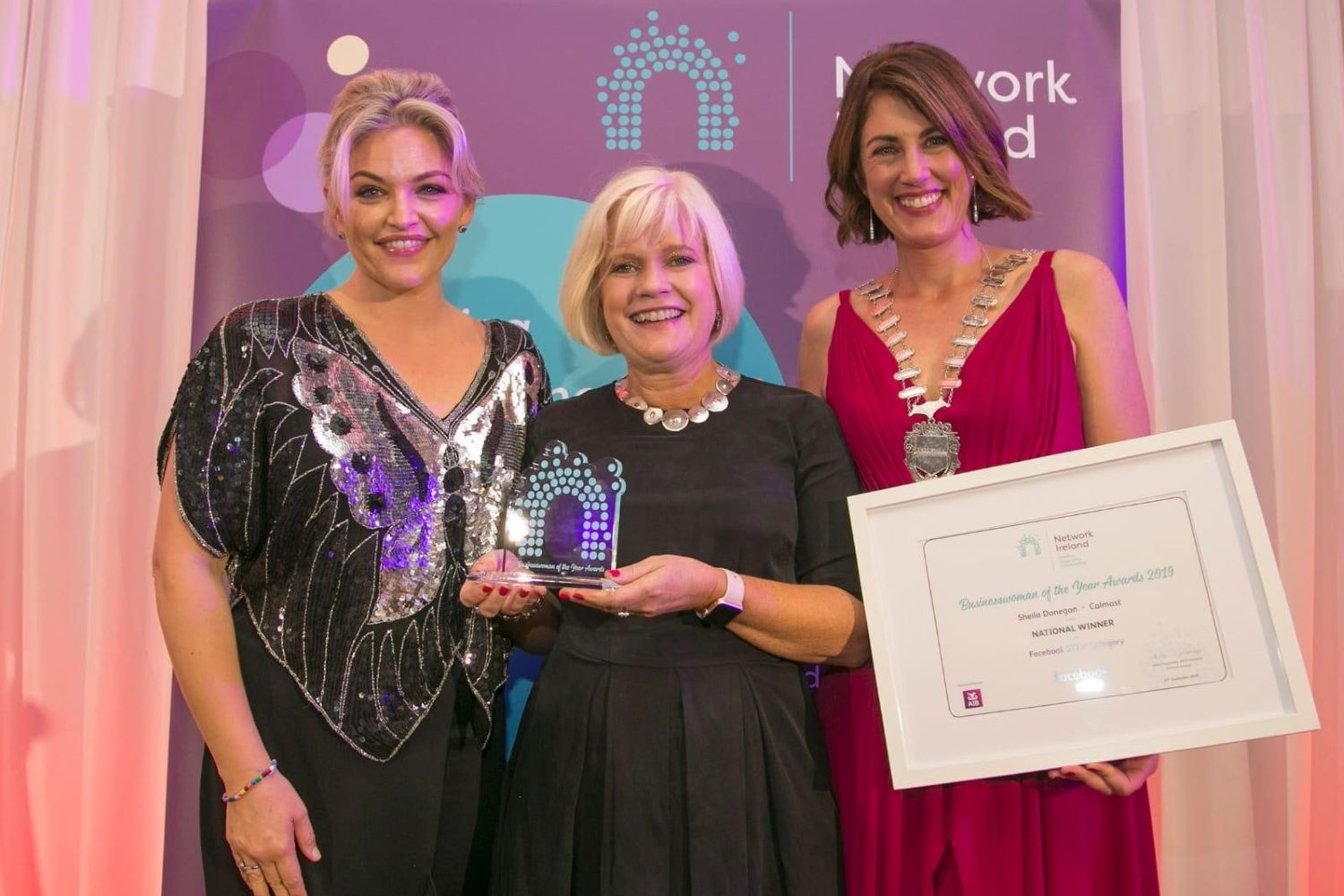 Pictured in September 2019 is Maths Week Ireland Co-founder Dr. Sheila Donegan, Director of Calmast at Waterford Institute of Technology (centre), who was honoured with the Network Ireland National Businesswoman of The Year Award in STEM, pictured with Helen Smyth, Facebook EMEA Ireland (left) and Helen Wycherley, President of Network Ireland.
