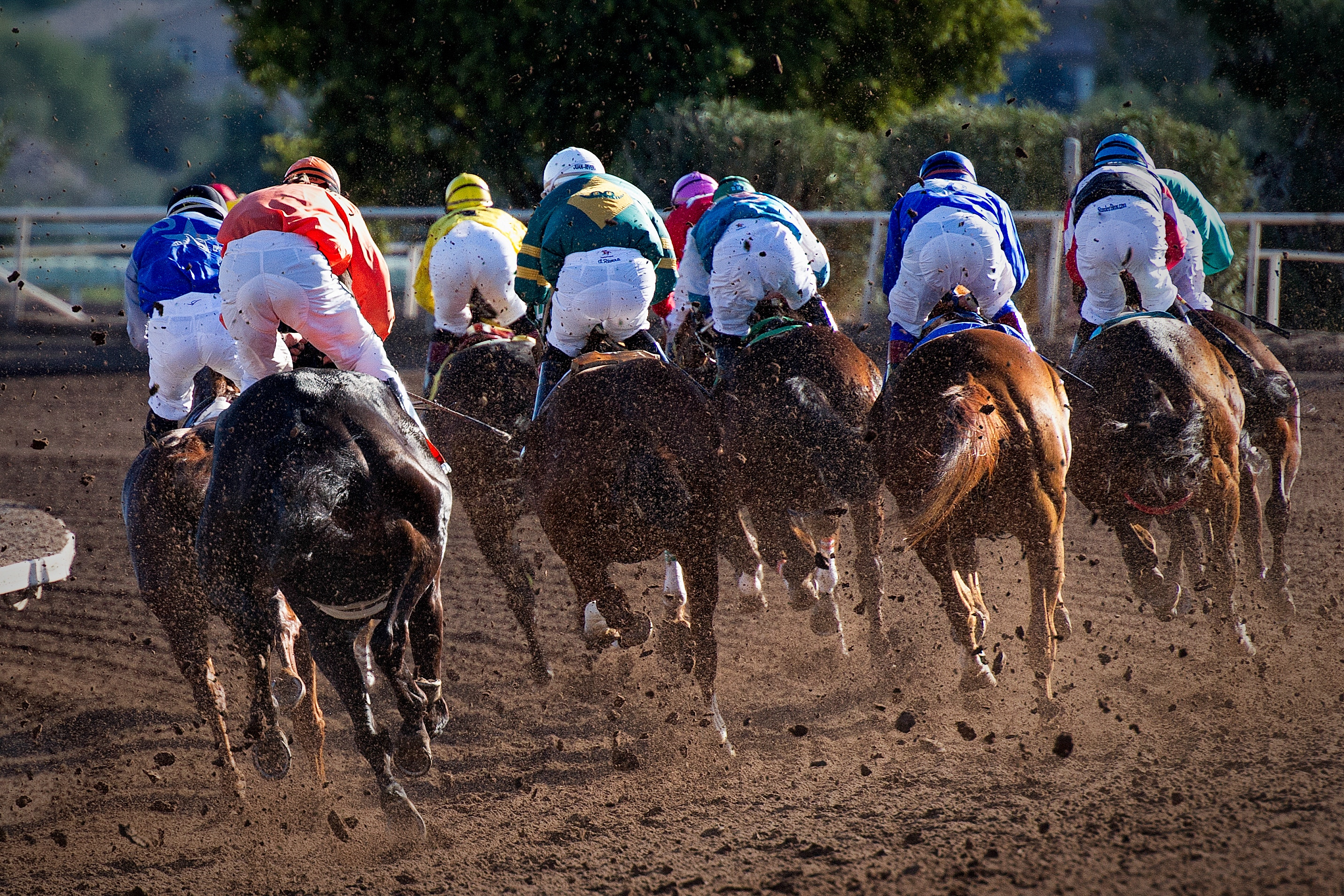 A research team in Waterford Institute of Technology (WIT) in conjunction with the University of Limerick are currently investigating the mental health, bone health and physiology of the jockey in three different projects. Phot: Photo by Gene Devine on Unsplash